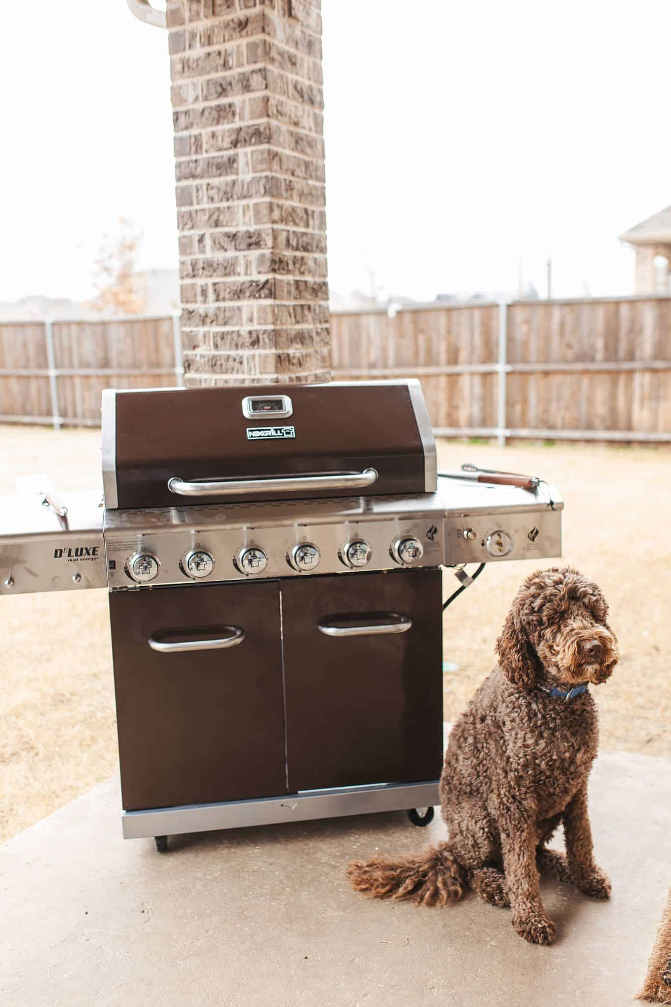 Home Depot Valentine's Day Gifts for Him by popular Dallas lifestyle blog, Glamorous Versatility: image of a dog sitting in front of a Nexgrill BBQ.